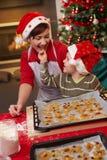 Gâteau de Noël d'échantillon de momie et de fils Image stock
