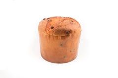Gâteau de Noël de Panettone avec le fond de blanc de décoration de brin de feuille de cyprès de signe, de houx, de gui, de lierre Photographie stock