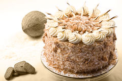 Gâteau de noix de coco Photo stock