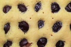 Gâteau de prune Image stock
