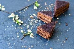 Gâteau de Sacher Vienne de chocolat Photographie stock libre de droits
