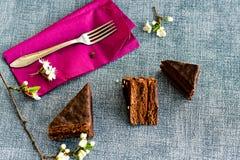 Gâteau de Sacher Vienne de chocolat Image stock