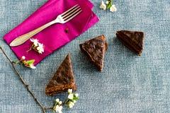 Gâteau de Sacher Vienne de chocolat Images stock