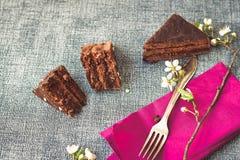Gâteau de Sacher Vienne de chocolat Photos libres de droits