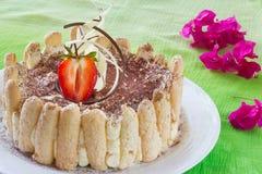 Gâteau de tiramisu sur le fond vert images libres de droits