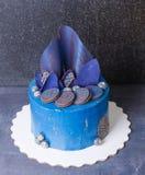 Gâteau de torsion de chocolat avec des biscuits et des myrtilles Photos libres de droits