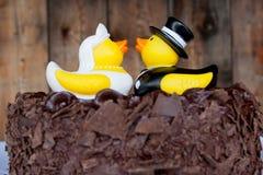 Gâteau en caoutchouc de canards Photographie stock libre de droits