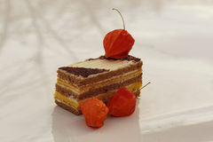 Gâteau et baies Image libre de droits