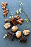 Gâteau et biscuits de Sacher Vienne de chocolat Photo libre de droits