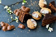Gâteau et biscuits de Sacher Vienne de chocolat Photos stock