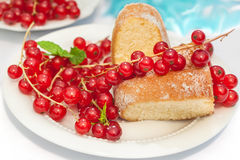 Gâteau et groseille rouge 2 Photo libre de droits