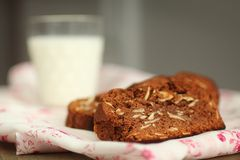 Gâteau et lait de chocolat photos libres de droits
