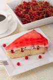 Gâteau fait maison Image stock