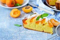 Gâteau fait maison avec des abricots et des nectarines photographie stock libre de droits