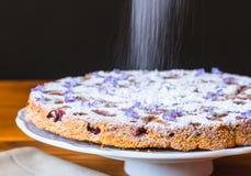 Gâteau italien avec du raisin Photographie stock libre de droits