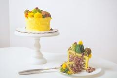 Gâteau jaune de biscuit image libre de droits