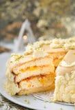 Gâteau mousseline avec de la confiture d'abricot photo libre de droits