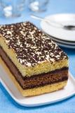 Gâteau mousseline italien Photos libres de droits