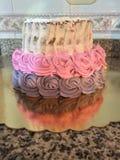 Gâteau nu de rose Images stock
