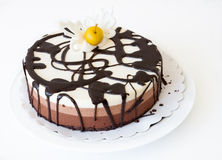 Gâteau posé Images stock