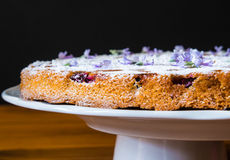 Gâteau rustique italien avec du raisin Image stock