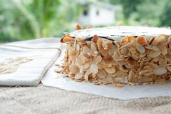 Gâteau traditionnel d'Esterhazy de Hongrois Image libre de droits