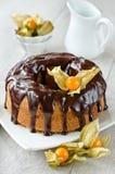 Gâteau vitré avec du chocolat liquide et décoré de l'hiver cher Photographie stock libre de droits