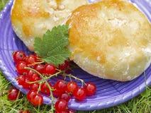 Gâteaux au fromage savoureux et groseilles rouges images libres de droits