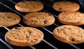 Gâteaux aux pépites de chocolat faisant cuire au four en four à la maison Fin vers le haut Photographie stock