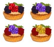 Gâteaux avec des baies d'isolement sur le blanc Illustration tirée par la main de vecteur Différentes baies de couleurs sur des g illustration libre de droits