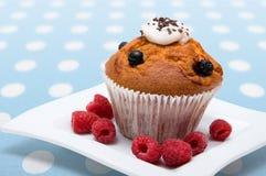 Gâteaux avec des framboises Photographie stock libre de droits