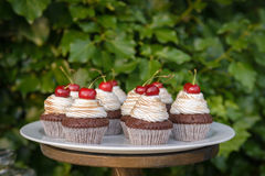 Gâteaux délicieux avec des cerises Photos libres de droits