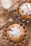 Gâteaux de canneberge Photo libre de droits