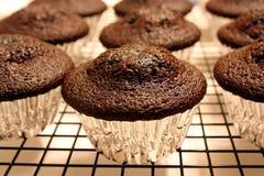 Gâteaux de chocolat Photographie stock
