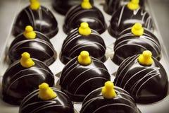 Gâteaux de chocolat Photographie stock libre de droits