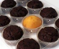Gâteaux de cuvette. Photographie stock libre de droits