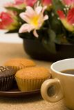 Gâteaux de cuvette et une cuvette de café Photographie stock