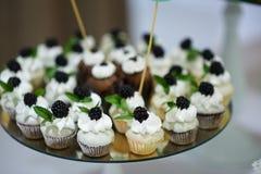 Gâteaux de fruit Image libre de droits