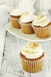 Gâteaux de potiron Photos libres de droits
