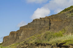 Géological cliff of Normandie Royalty Free Stock Photography