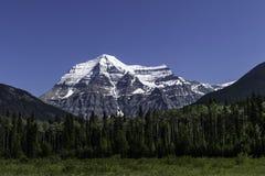 Góra Robson W Skalistych górach W kolumbia brytyjska obrazy stock