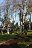 GÃ-¼lhane Parkı Ä°stanbul, Turkiet royaltyfri fotografi