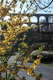 Göltzschtalbrà ¼cke - störst tegelsten-sten för värld bro Royaltyfria Bilder