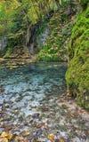 GÃrtersteiner waterfall Stock Photo