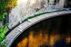 Gänse in einem Teich Stockbilder