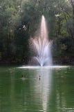 Gänse mit Brunnen Stockfotografie