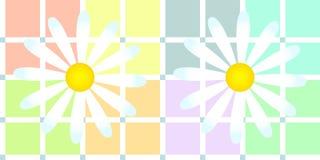 Gänseblümchen über weichem Pastellplaid Lizenzfreies Stockfoto