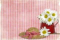 Gänseblümchen auf Gingham Stockfoto