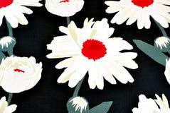 Gänseblümchen auf Schwarzem Stockfoto