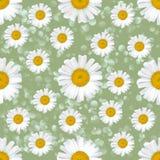 Gänseblümchen blüht nahtloses Muster auf abstraktem Hintergrund Stockfoto